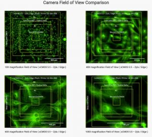 Camera Field of View Comparison1