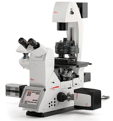 Leica DMi8 Inverted Microscope