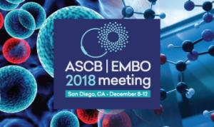 ASCB Annual Meeting 2018 @ ASCB Annual Meeting | San Diego | California | United States